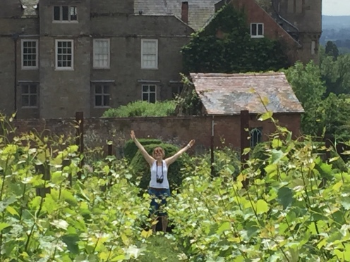 Nicola at the end of a row of vines.