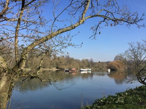 Walking by Petersham Fields towards Richmond