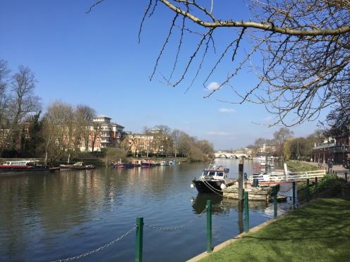 Richmond bridge in the distance